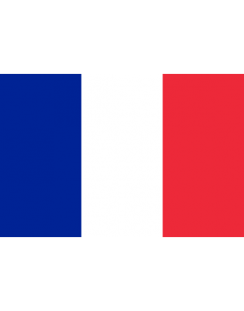 French Iron-on & sew-on embroidered Flag for clothing and textile.
