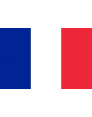 Patch Bandiera Francia termoadesiva e da cucire su abbigliamento, cappelli, tessile.