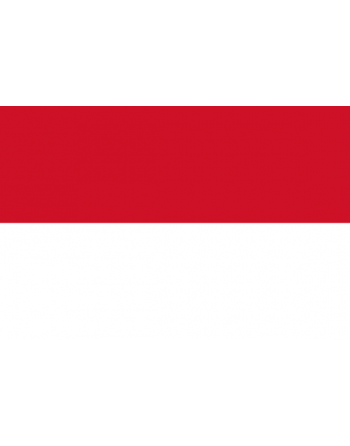 Iron-on embroidered Flag Indonesia