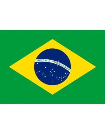 Aufnäher Nationalflagge Brasilien mit Thermokleber