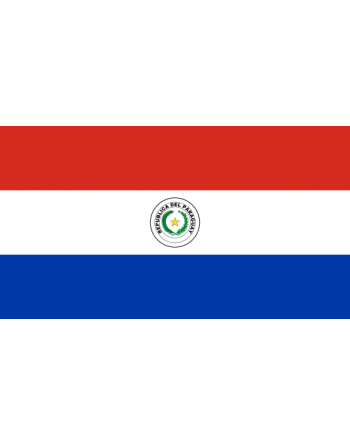 Iron-on embroidered Flag Paraguay