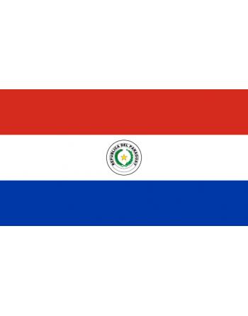 Parche bandera Paraguay