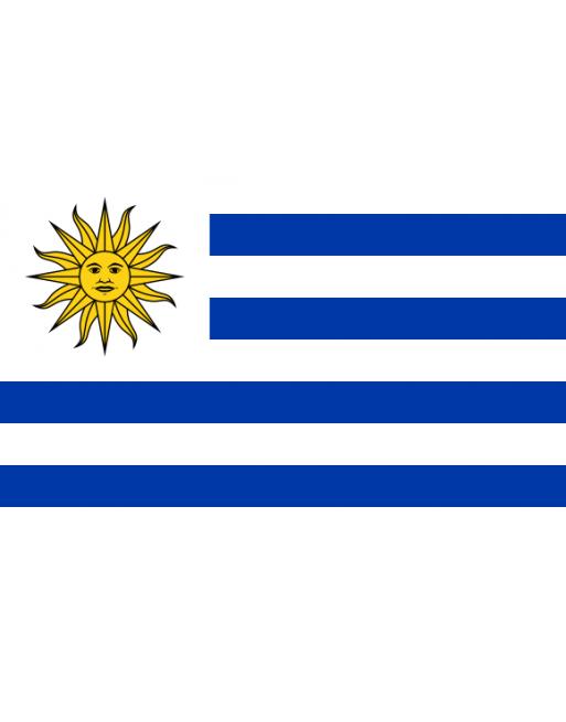 Aufnäher Nationalflagge Uruguay mit Thermokleber