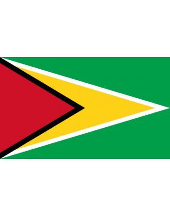 Aufnäher Nationalflagge Guyana mit Thermokleber