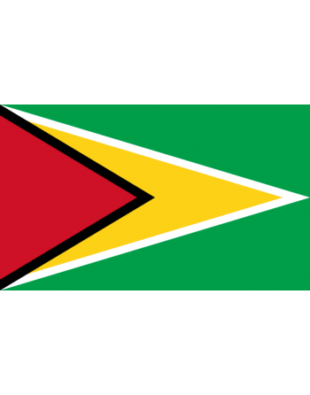 Iron-on embroidered Flag Guyana
