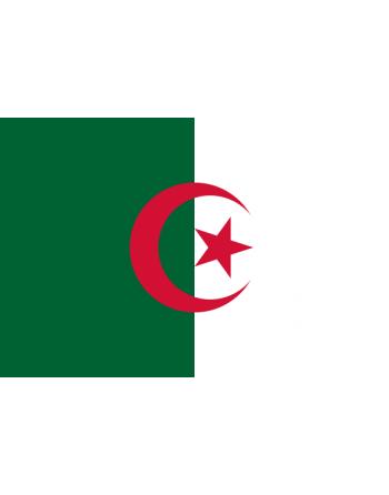 Aufnäher Nationalflagge Algerien mit Thermokleber