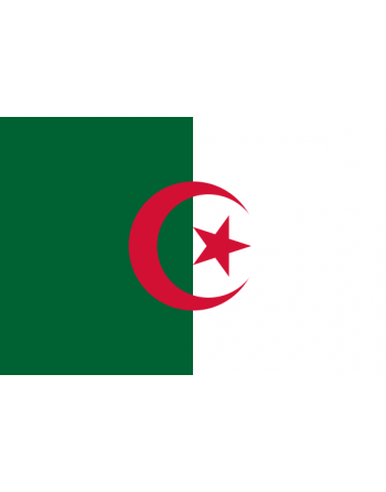 Iron-on embroidered flag Algeria