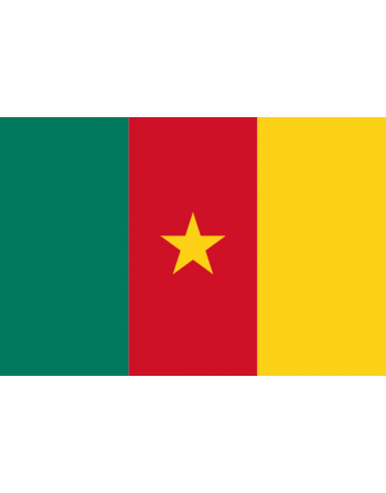 Aufnäher Nationalflagge Kamerun mit Thermokleber