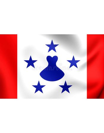 Parche bandera Islas Australes