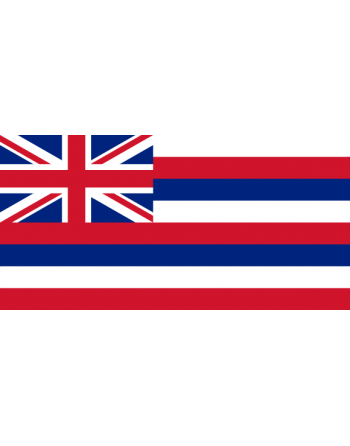 Écussons Drapeaux Hawaii thermocollant